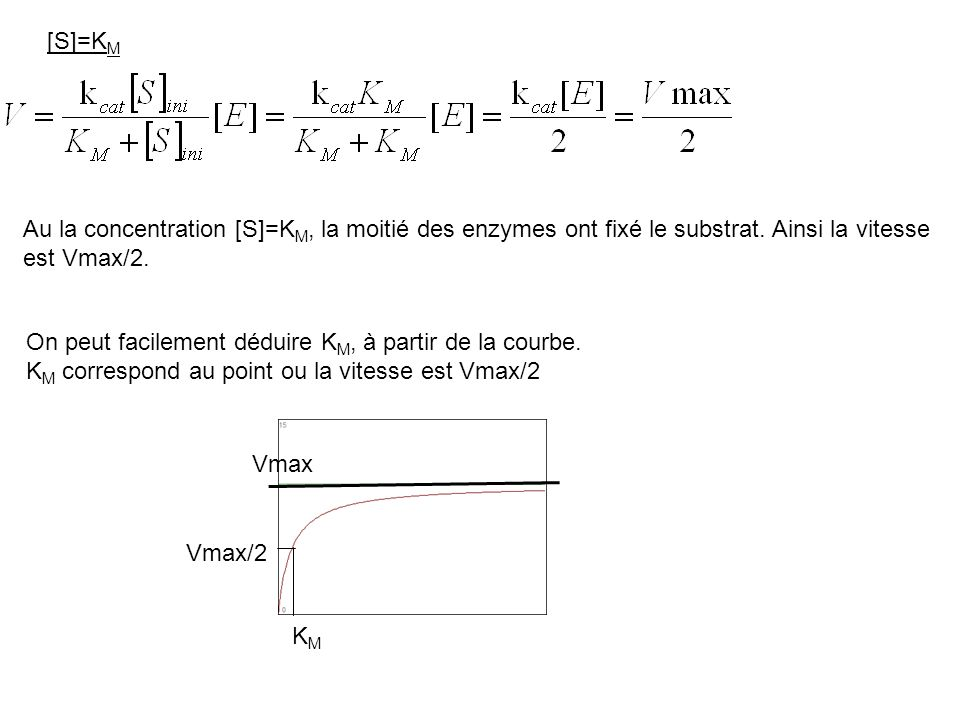 [S]=KM Au la concentration [S]=KM, la moitié des enzymes ont fixé le substrat. Ainsi la vitesse est Vmax/2.